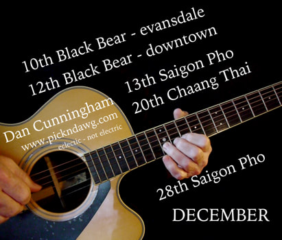 December gigs 2019 Dan Cunningham pickndawg