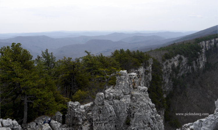 view from North Fork Mountain